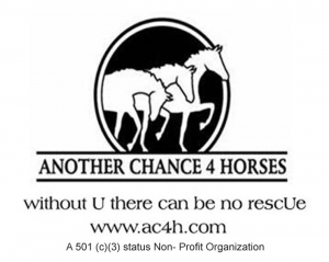 Another Chance 4 Horses, Inc.