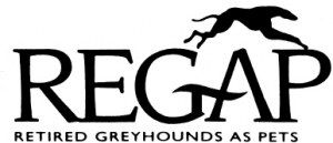 Michigan Retired Greyhounds As Pets (REGAP)