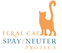Feral Cat Spay/Neuter Project